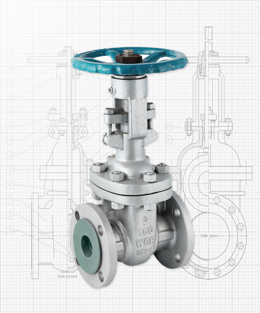 Nexam Industries - Gate valves